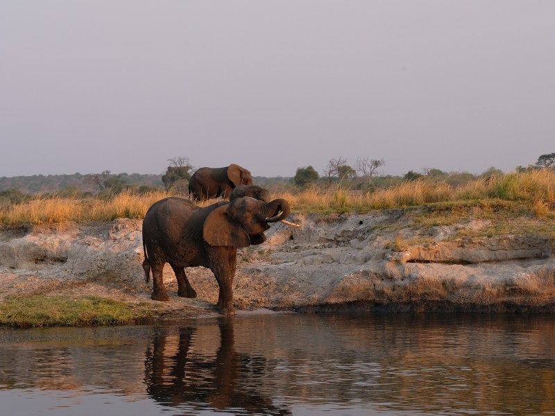 Flugsafari, Hausboot & Komfort-Camping in Botswana