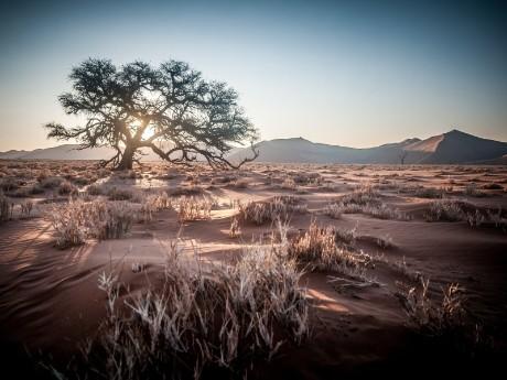 Namibias Wüsten & Schluchten deluxe