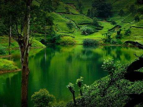 Die traumhafte Natur Sri Lankas